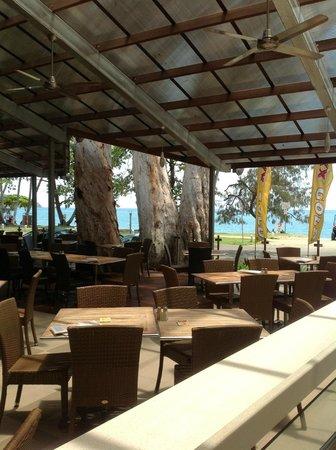 The Surf Club Palm Cove