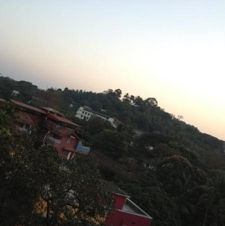 Nanutel Margao Hotel:                                     view from the room