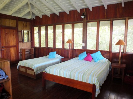 Tiskita Jungle Lodge: Roomy, Clean Cabin