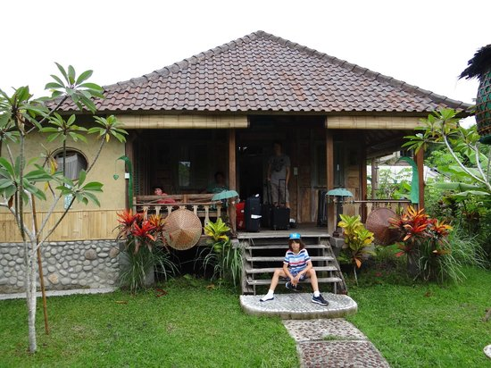 Swasti Eco Cottages:                                     our bungalow