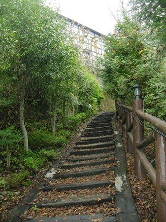 Maple Leaf Holiday Villa:                   Maple-trail path