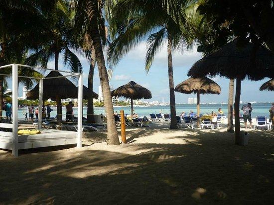 Grand Oasis Palm:                                     Playa