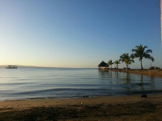 Amatique Bay Resort & Marina :                   vista de la bahia