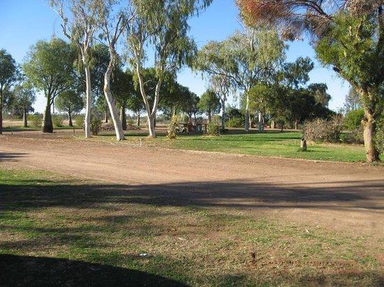 Dog friendly/people friendly caravan park - Review of