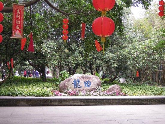 Sun Yat Sen's Residence Memorial Museum: village life