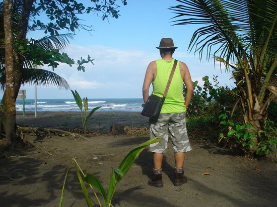 Cabinas El Icaco Tortuguero:                   Esta vista hermosa te ofrece El Icaco