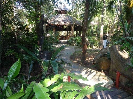Somkiet Buri Resort:                   eine grüne Oase