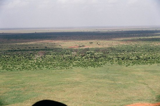 Voi Safari Lodge: View from bar