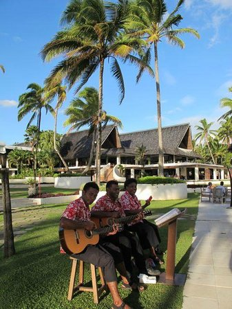 The Pearl Resort :                   Sweet tunes poolside during happy hour