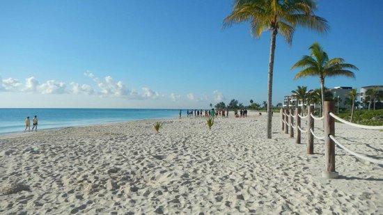 Pure Mareazul :                   Vista de playa frente al hotel