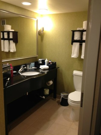 Hampton Inn Asheville - Tunnel Road:                   bathroom