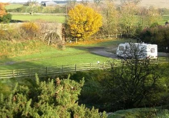 Ireby Green Farm Caravan Site: Caravan pitches