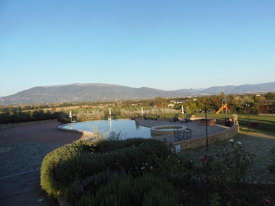 Agriturismo Tenuta del Perugino:                   la piscina