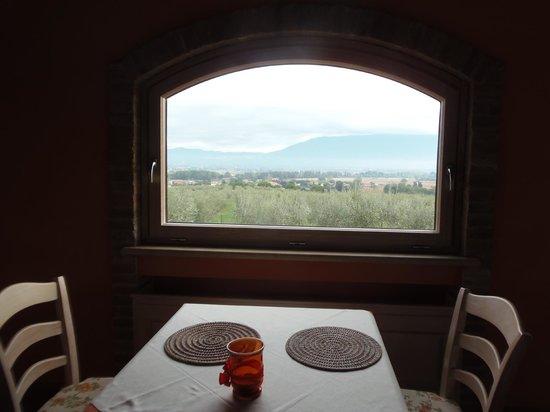 Tenuta Del Perugino:                   vista dalla sala ristorante
