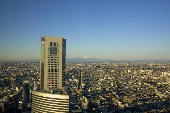 Park Hyatt Tokyo: Fuji Mountain