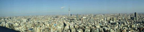โรงแรมแมนดาริน โอเรียนทอล โตเกียว: Panoramic view