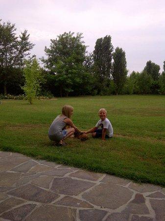 Agriturismo Ai Carpini: giardino