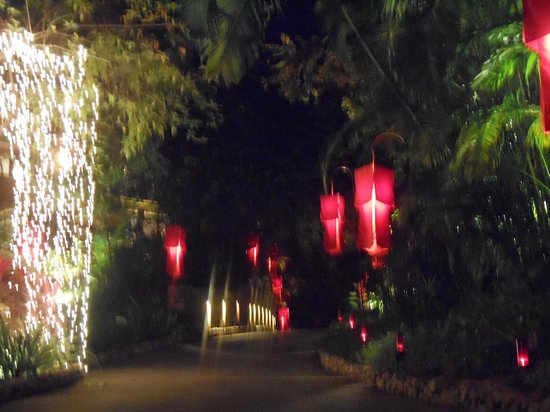 Rocky's Boutique Resort : at night