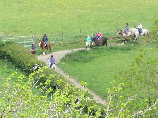 Llandrindod Wells, UK: Horseriding at Underhill Riding Stables