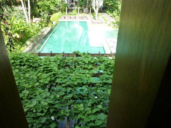 COMO Uma Ubud:                   プールバーからの眺め
