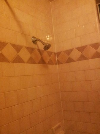 Blue Seal Inn: the shower