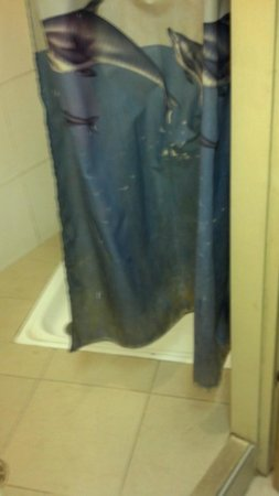 Sky Hostel:                   Decrepit mold stiffened on shower curtain