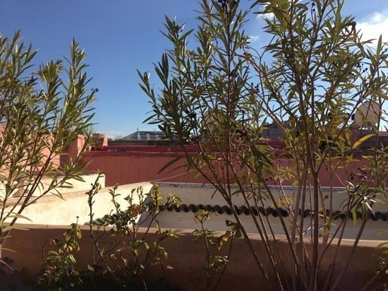 Riad Tawanza :                   Roof terrace