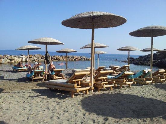 The Rοyal Blue:                   The beach