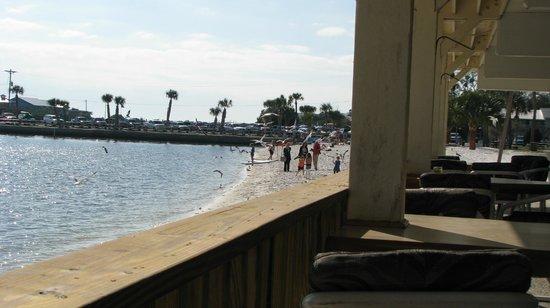 Cedar Key Harbour Master Suites:                   Local beach