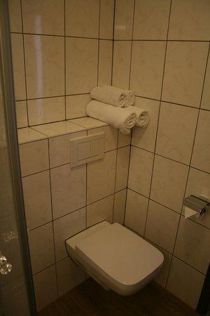 Hotel Buckmann: Bad Standard