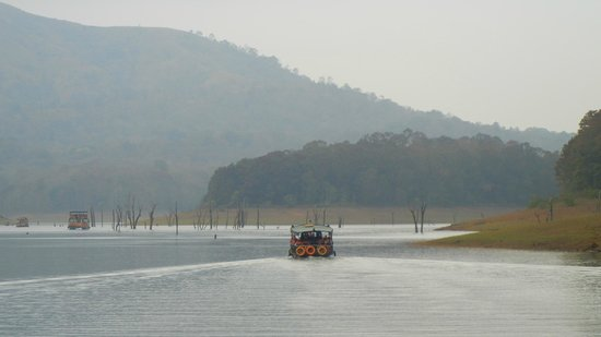 Jungle Palace:                   The Periyar lake