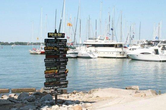 Island Club: Downtown Docks