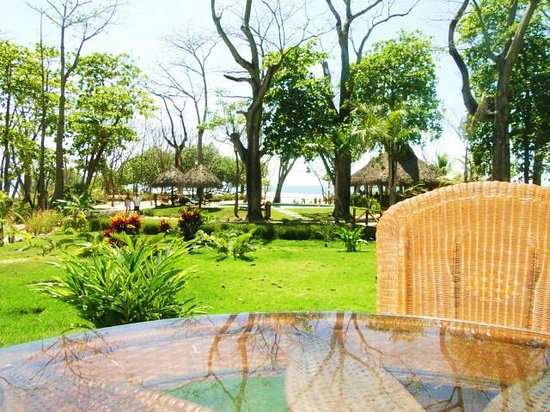 Playa Cielo: Beautiful grounds