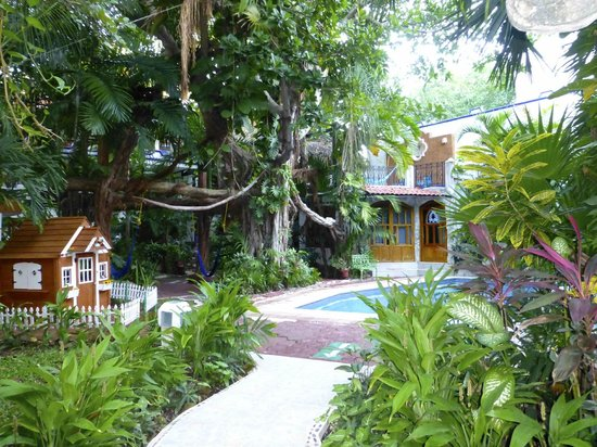 Eco-Hotel El Rey Del Caribe: Le jardin intérieur de l'hôtel