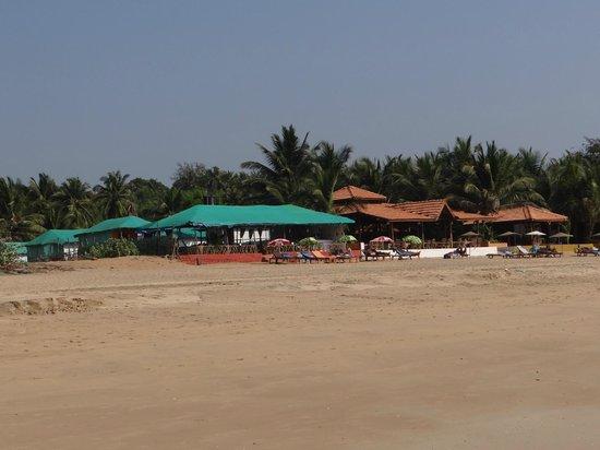 Agonda Beach:                                     shacks