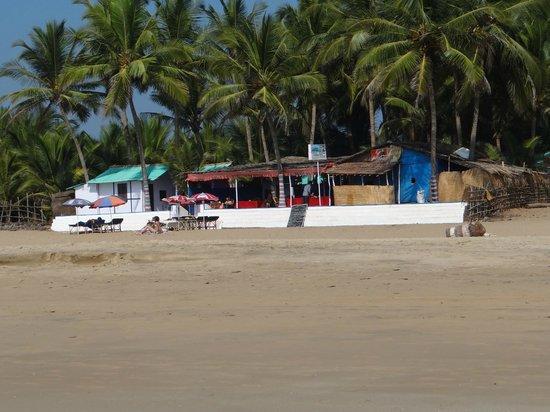 Agonda Beach :                                     shacks