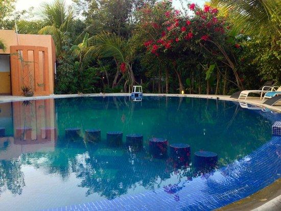 Don Diego de la Selva: La piscine