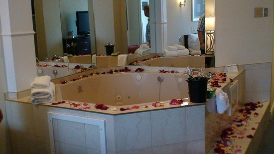 Fantasyland Hotel & Resort:                   The jacuzzi with the petals and wine
