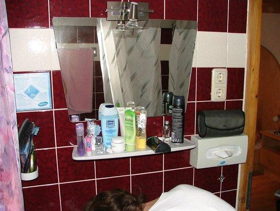 Haus Heidehof:                   Bathroom