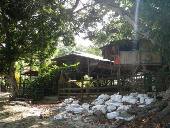 Departamento de Chocó, Colombia:                   natur pur