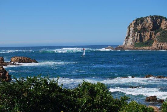 Knysna, South Africa: heads