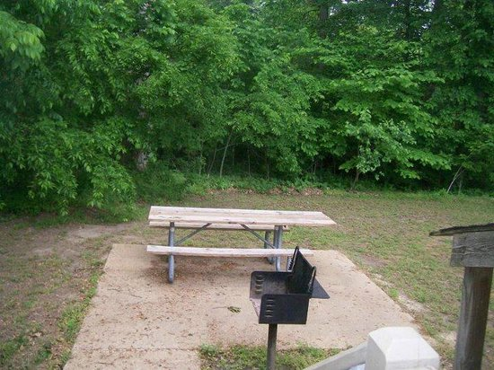 Chippokes Plantation State Park:                   Spratley House backyard picnic table and grill