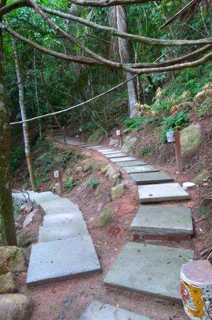 Pousada Vila do Bosque: Parte trasera