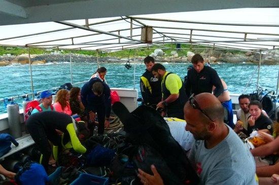 Reserva Biologica Marinha do Arvoredo:                   Preparando para buceo