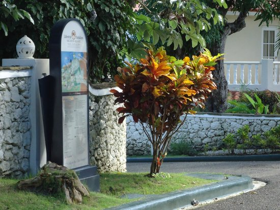 The Tropical at Lifestyle Holidays Vacation Resort : Gorgeous shrubs and flowers all over the resort!