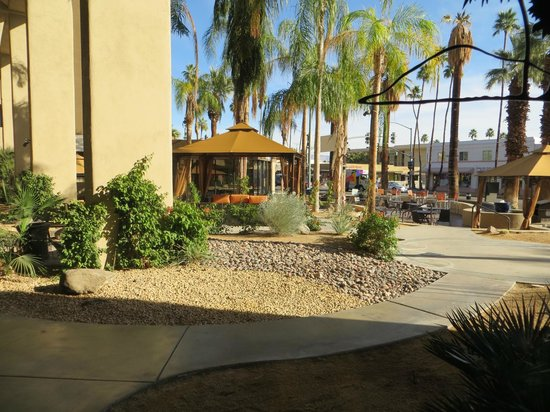 Hyatt Palm Springs:                   nice plantings on street
