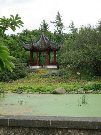 Photo of Botanical Garden Old Botanical Gardens (Alter Botanischer Garten) at Stephanspl., Hamburg, Germany