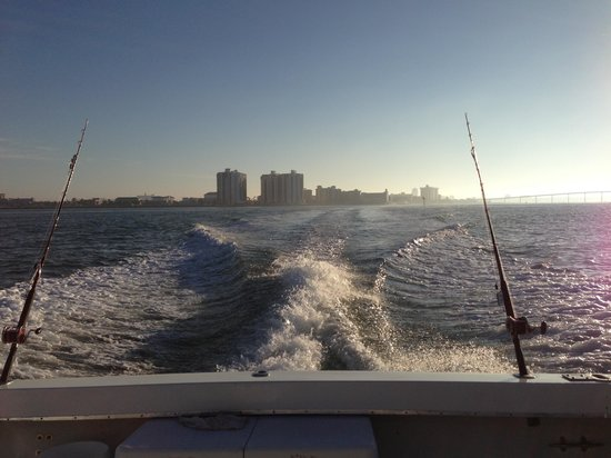 King fish picture of above average charters clearwater for Fishing charters clearwater fl