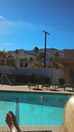 Pura Vida Palm Springs:                   View from the pool.