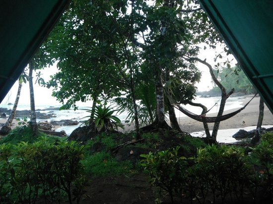 Corcovado Adventures Tent Camp:                   View out of the tent